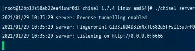 Chisel内网穿透工具